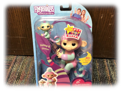 5-Fingerling Monkey and Baby